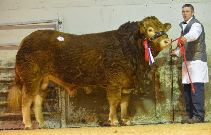 Eniver George, 4,200gns