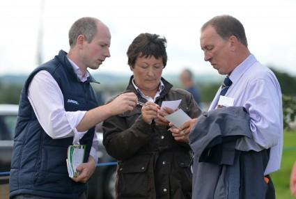 Stockjudging Judges Cahir McAuley, Delana Davies & James Cooper