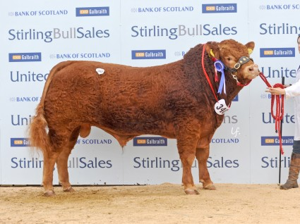 Brims Hawk 8,000gns