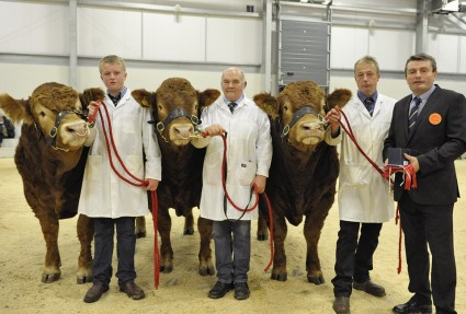 Champion Carlisle Group of Three