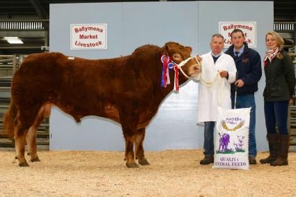 Scotchtown Harvey Supreme Champion 3,300gns