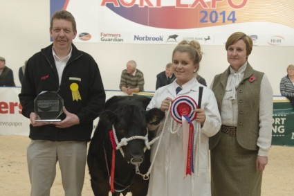 Baby Beef Championship Presentation Pokerlicious (99 M & M Alford)