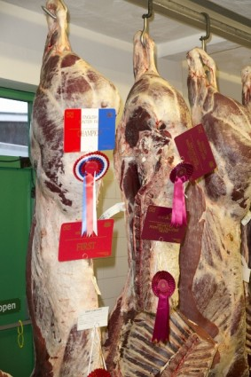 Champion Carcase from Frank Page