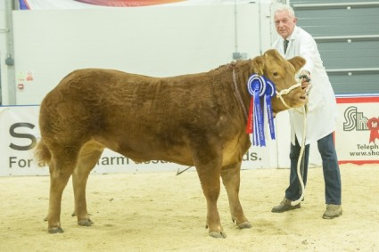 Reserve Supreme Champion More Of That (191 P&S Sellers)