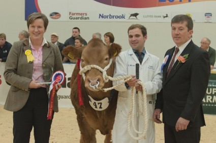 Steer Championship Presentation Maybe This Time (James Nisbet)