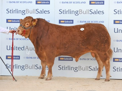 Goldies Ivanhoe 5,500gns