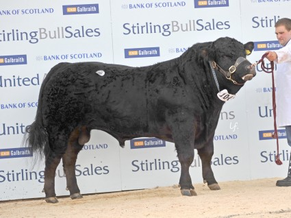 Grahams Black Icon 6,000gns