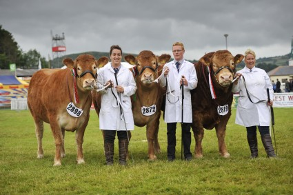 Exhibitor Bred Group of Three