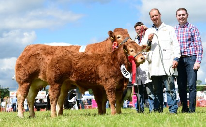 Lowbarn Fotty Supreme Overall Res & Female Champion