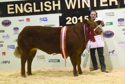 Supreme champion Red Hot Honey from M Harryman and S Warriner.
