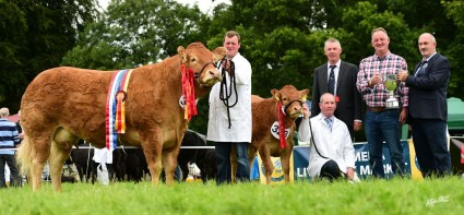 Overall Supreme Champion Glenrock Inclusive & Calf Champion Derriaghy Noodles