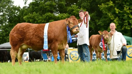 Res Overall Clydevalley Jessie & Res Calf Clydevalley Nougat
