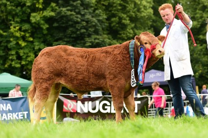 Res Overall Male Champion Robineed Muhammad